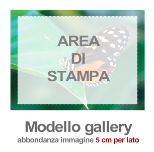 area_di_stampa_gallery